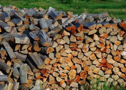 Skład drewna kominkowego pinus bielskobiała